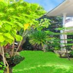 4 bedroom Spacious family house for sale Thalang